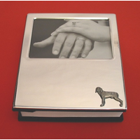 Weimaraner Dog Plated Photograph Album 100 6 x 4 Photos
